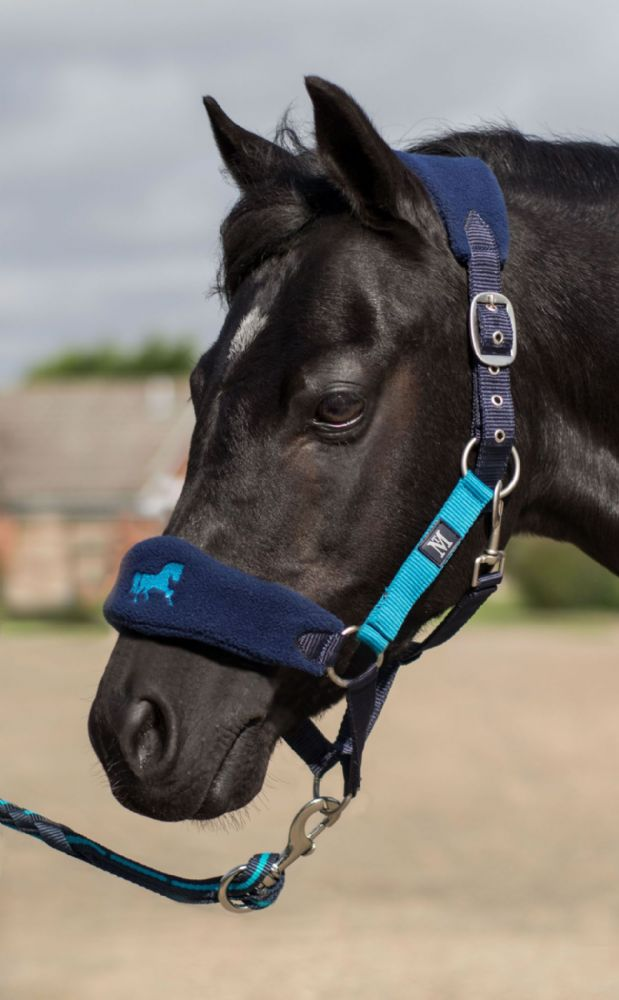 Mark Todd Pony Padded Headcollar in Navy/Aqua